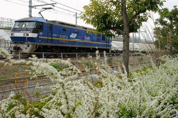 2086レ【EF210-307牽引】