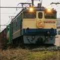 Photos: 75レ【EF65 2067牽引】