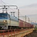 Photos: 2065レ【EF66 117牽引】