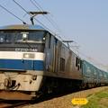 Photos: 臨8056レ【EF210-148牽引】