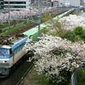 Photos: 55レ【EF66 105牽引】