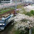 Photos: 1053レ【EF210-155牽引】