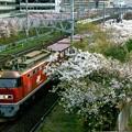 Photos: 4070レ【EF510-15牽引】