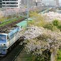 Photos: 55レ【EF66 112牽引】