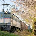Photos: 74レ【EF65 2060牽引】