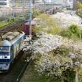 Photos: 1053レ【EF210-163牽引】