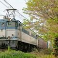 Photos: 74レ【EF65 2050牽引】