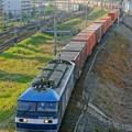 Photos: 臨8053レ【EF210-138牽引】