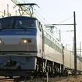 Photos: 55レ【EF66 121牽引】