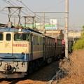 Photos: 74レ【EF65 2088牽引】