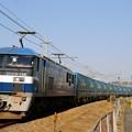 臨8056レ【EF210-128牽引】