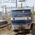 Photos: 1086レ【EF210-149牽引】