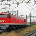 3095レ【EF510-1牽引】