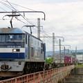 Photos: 1086レ【EF210-146牽引】