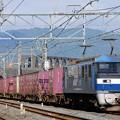 84レ【EF210-156代走】