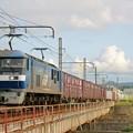 Photos: 2065レ【EF210-167牽引】