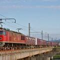 Photos: 4070レ【EF510-14牽引】