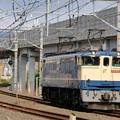 Photos: 配1792レ【EF65 2088単機】
