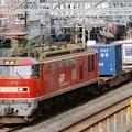 Photos: 84レ【EF510-12牽引】