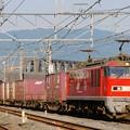 Photos: 84レ【EF510-6牽引】