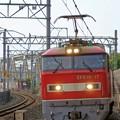 Photos: 4076レ【EF510-17牽引】