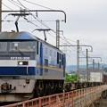 Photos: 1086レ【EF210-308牽引】