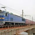 Photos: 4070レ【EF510-506牽引】