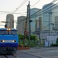 Photos: 51レ SRC【Mc250-4】