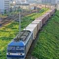 Photos: 5057レ【EF210-138牽引】