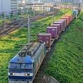 Photos: 臨8053レ【EF210-901牽引】
