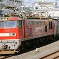 Photos: 84レ【EF510-11牽引】