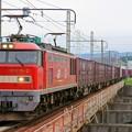 Photos: 4070レ【EF510-2牽引】