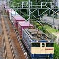 Photos: 74レ【EF65 2091牽引】