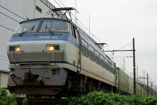 55レ【EF66 131牽引】