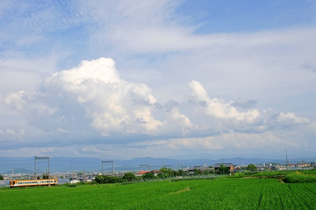 16010系 南大阪線
