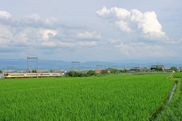 16000系 南大阪線