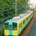 Photos: 阪神武庫川線 TORAKO