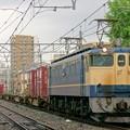 5087レ【EF65 2096牽引】