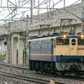 Photos: 配1792レ【EF65 2096単機】