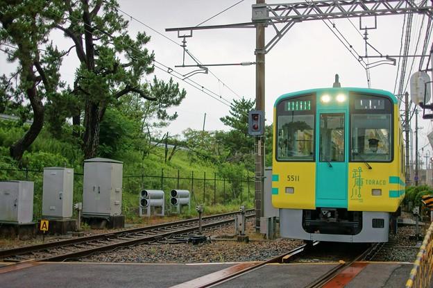 阪神武庫川線 TORAKO