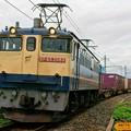 Photos: 74レ【EF65 2089牽引】