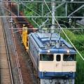 宝殿工臨【EF65 1135牽引】