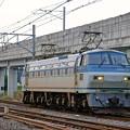 単1780【EF66 115】