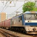 2065レ【EF210-158牽引】