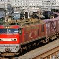 Photos: 84レ【EF510 5牽引】