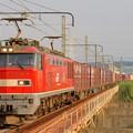Photos: 4070レ【EF510-8牽引】
