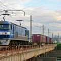 Photos: 2065レ【EF210-109牽引】