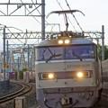 Photos: 4076レ【EF510-509牽引】