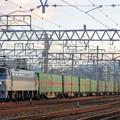 Photos: 55レ【EF66 108牽引】