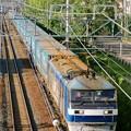 Photos: 臨8056レ【EF210-122牽引】